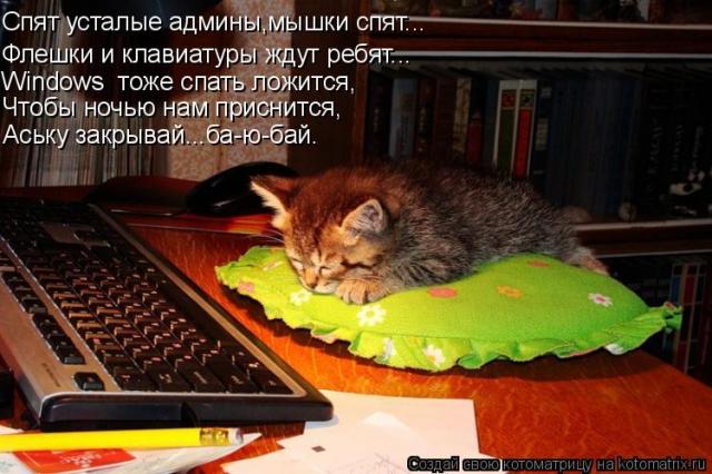 по ночам приходит мышь мягкое