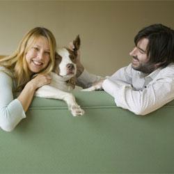 Создавать семью лучше с любителем собак