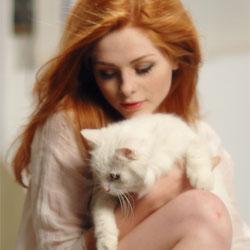Лучше кот, чем любовник