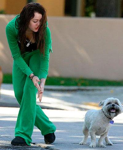 Майли Сайрус с собакой
