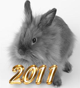 Зодиакальный общий гороскоп на 2011 г