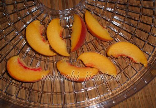 Сушка персиков в домашних условиях 961
