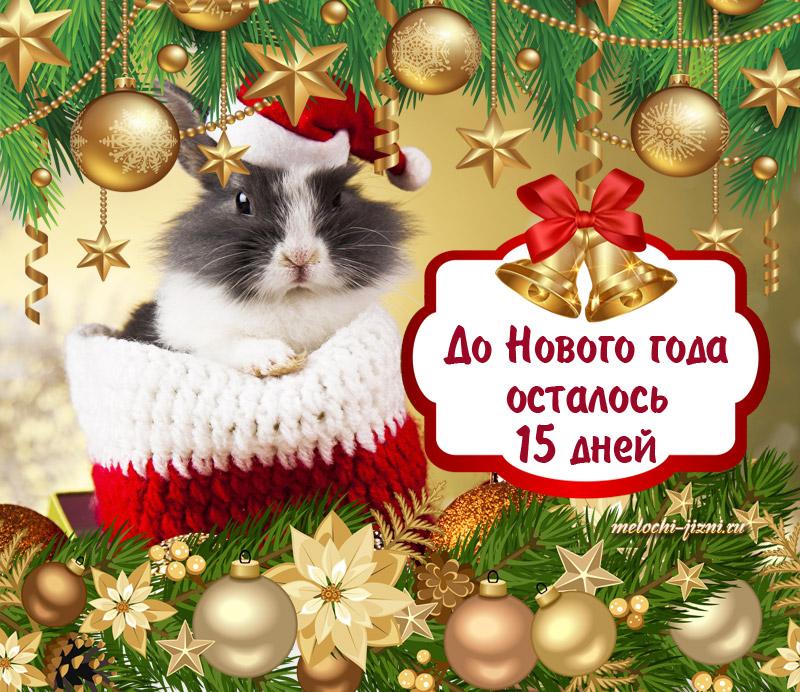 Картинки нового года осталось
